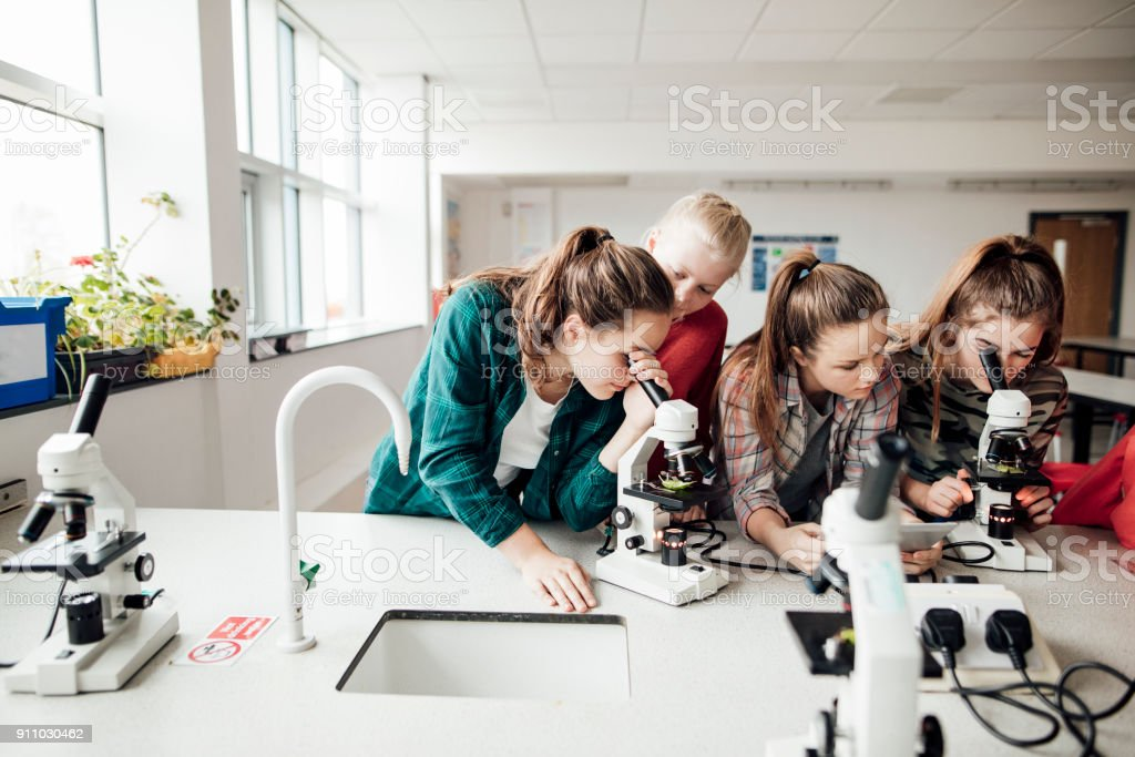STEM at School stock photo
