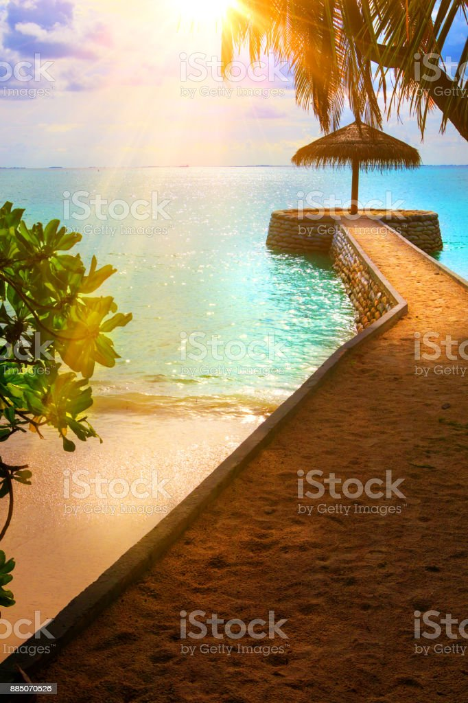 At the beach on Maldives stock photo