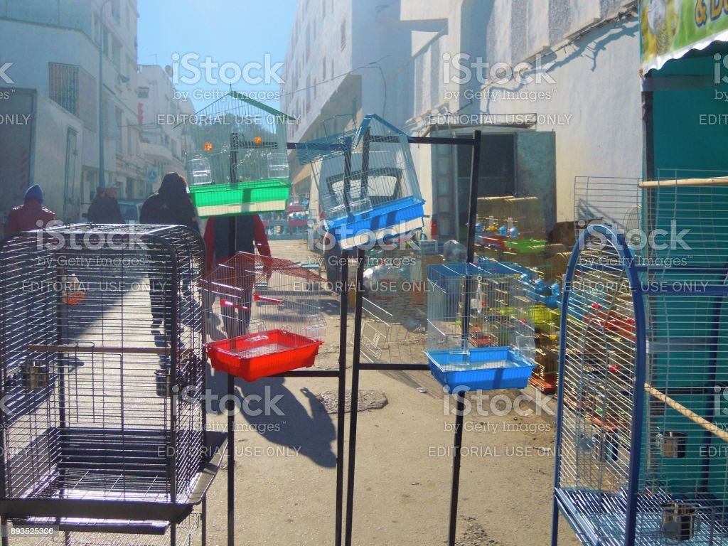 At the bird and animal market. Bird cages for sale. Tunis, Tunisia. stock photo