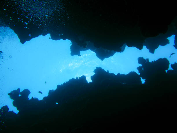 At the bottom of an underwater canyon in Dahab, Egypt stock photo