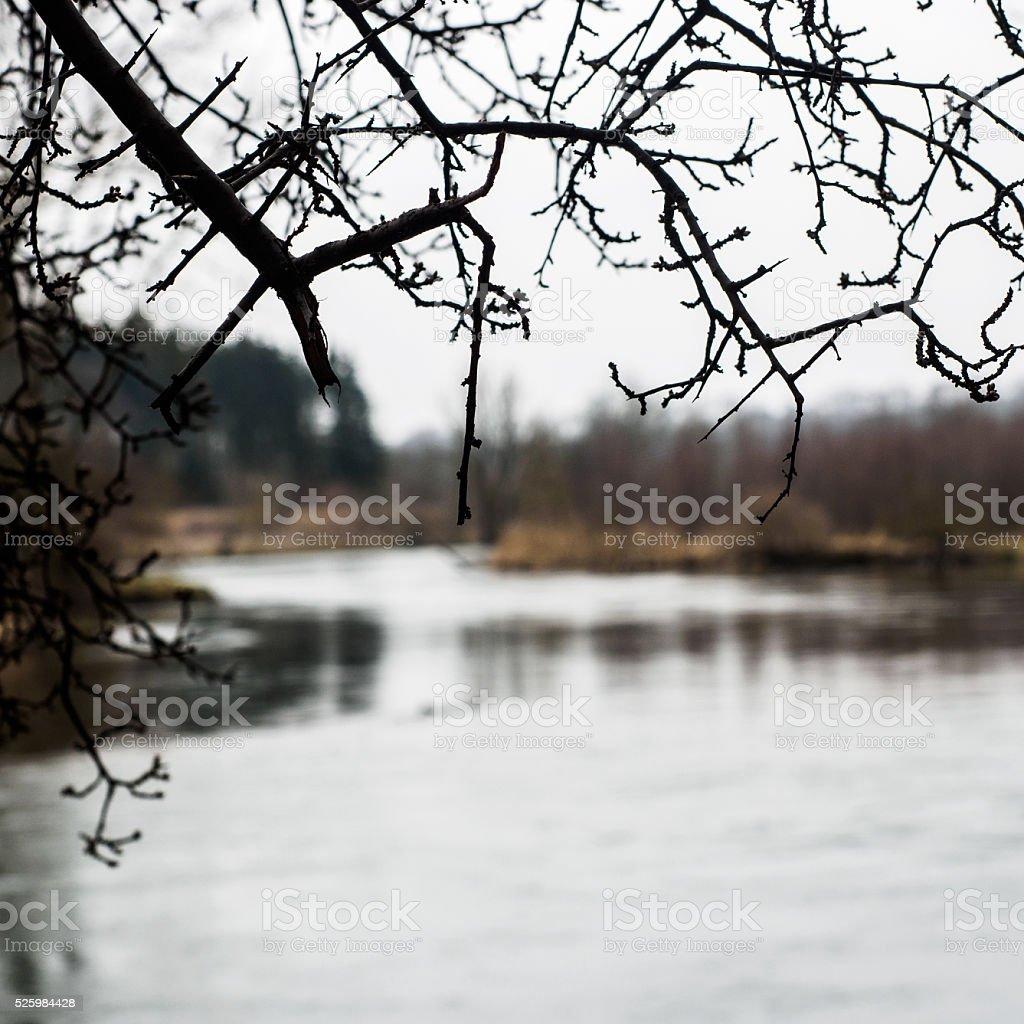 At the Danube stock photo