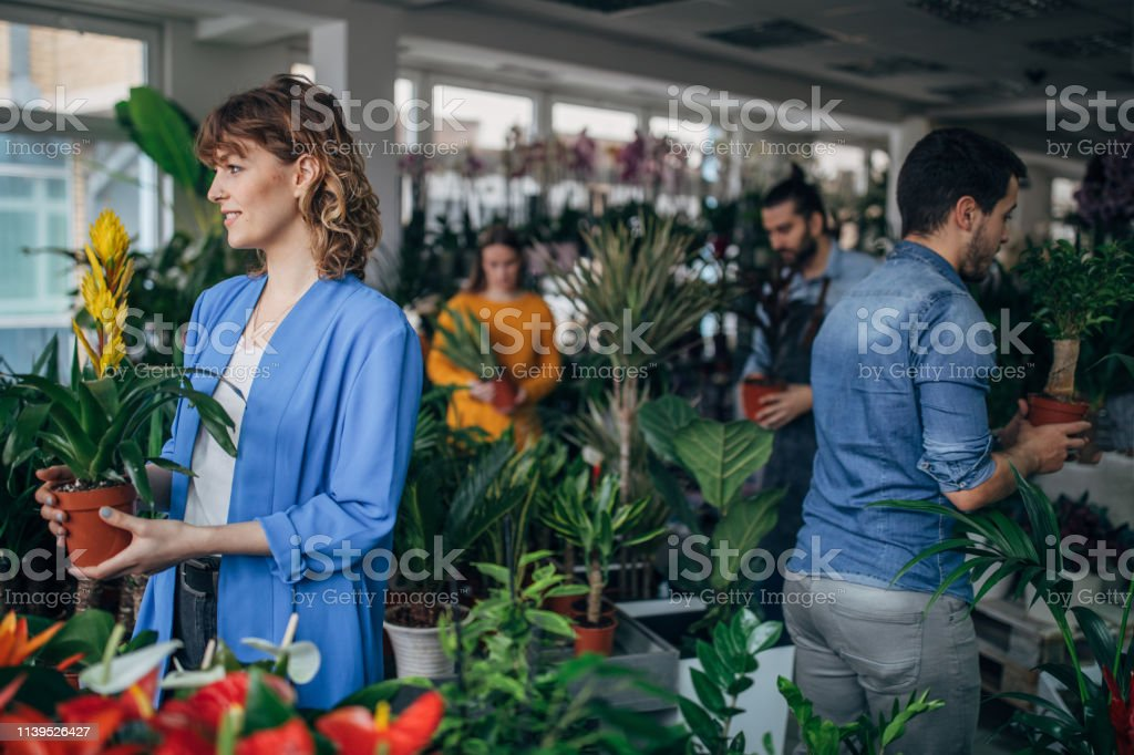 Florists at the flower shop, taking care of plants.
