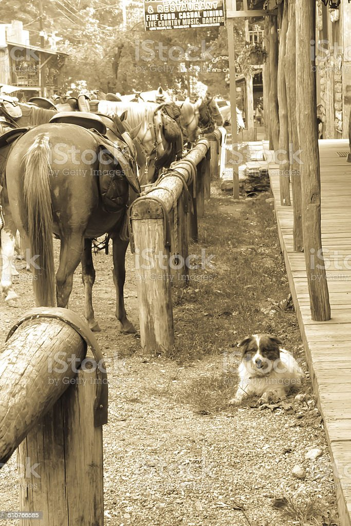at the hitching post stock photo