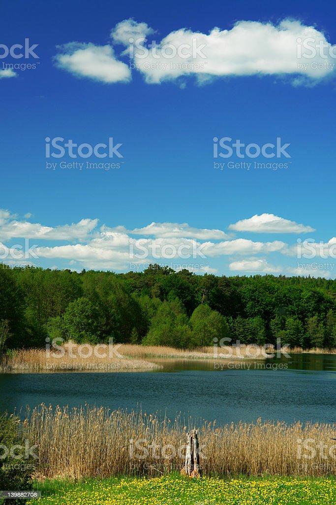 At the Lake royalty-free stock photo