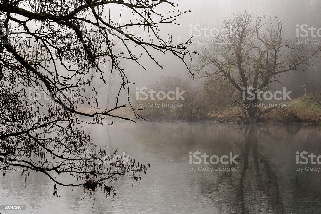 At the river Danube II stock photo