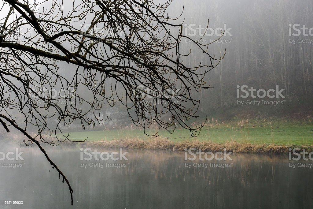 At the river Danube stock photo