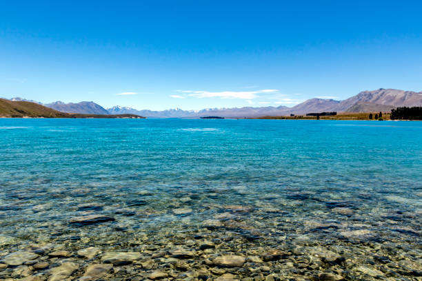 at the shore of lake tekapo - lakeshore stock photos and pictures