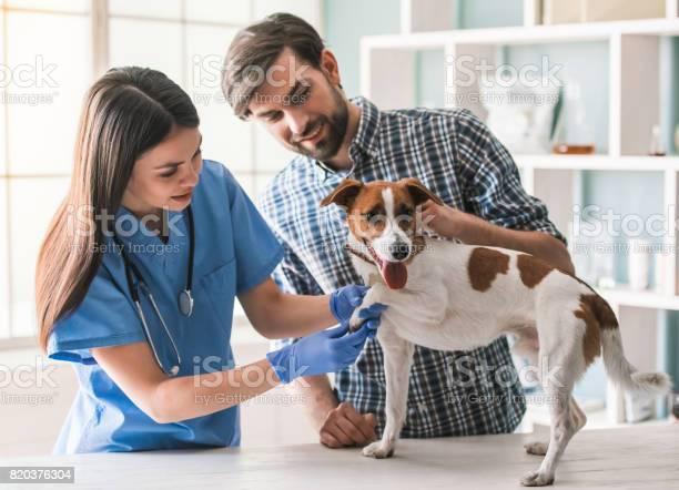 At the veterinarian picture id820376304?b=1&k=6&m=820376304&s=612x612&h=0nrpna6tebialqrfifcm z4ew2bwozpqsfwmvpav0cq=