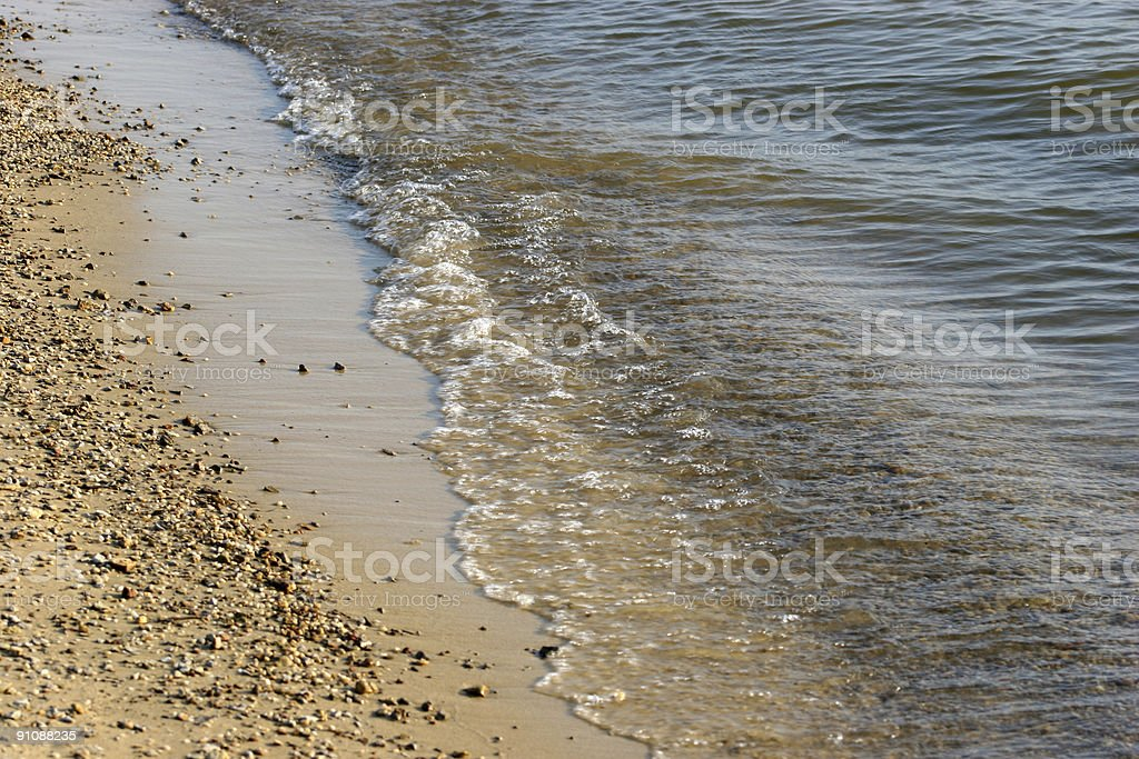 At the Water's Edge royalty-free stock photo