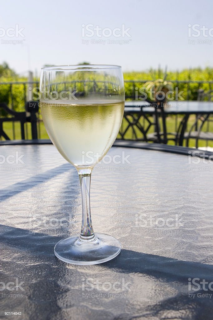 At the winery royalty-free stock photo