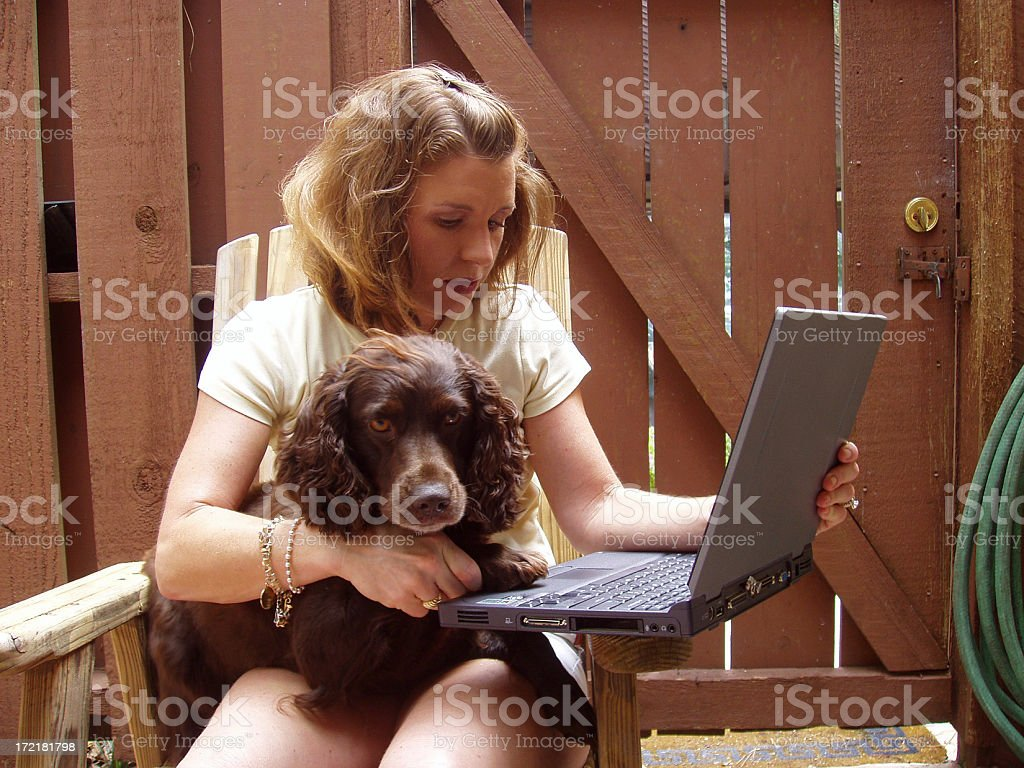At work with doggy stock photo
