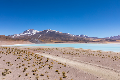 Atacama Desert, Chile. Salar Aguas Calientes. Lake Tuyacto. South America.