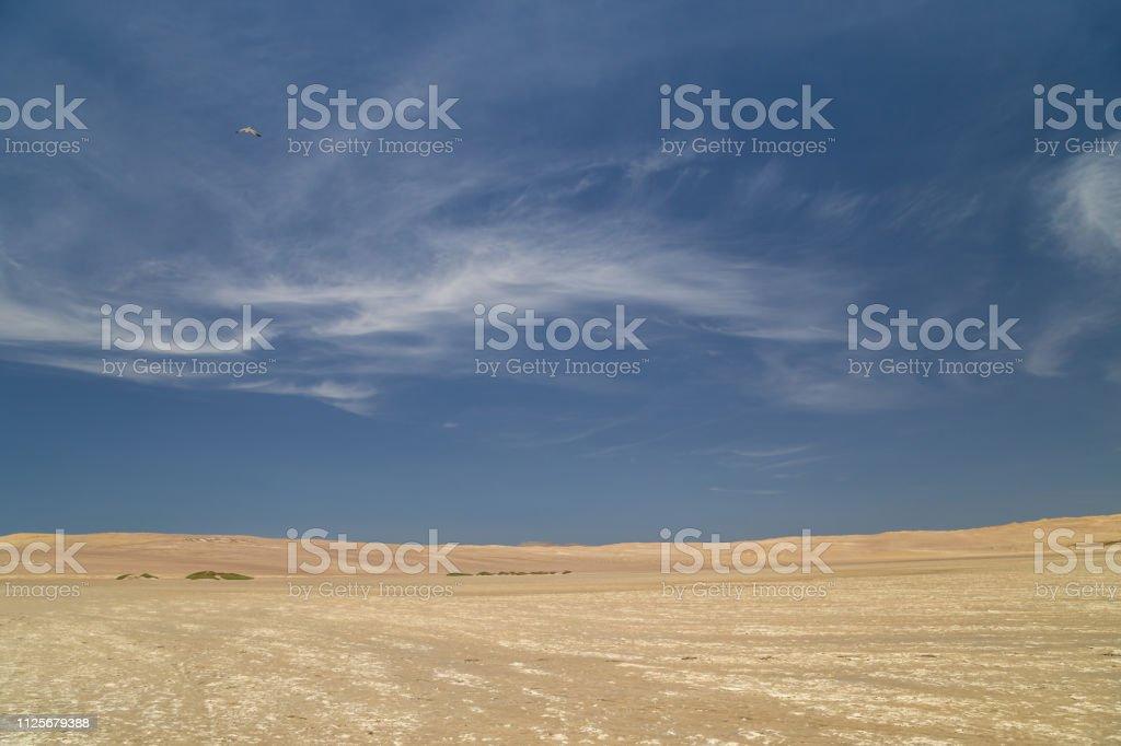 Deserto de Atacama, no Parque Nacional de Paracas, Peru - foto de acervo