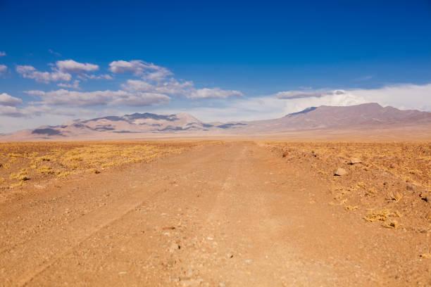 Atacama Desert  – Foto