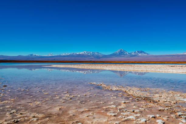 Atacama-Wüste - Salz Lagune - vulkanischen Landescape - Oase - Wild Life reservieren - Reflex--Cejar Lagune – Foto