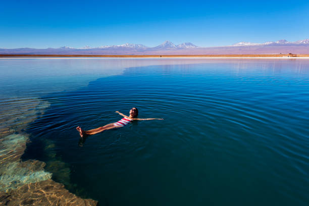 Atacama-Wüste - Salz Lagune - vulkanischen Landescape - Oase - Wild Life reservieren - Floating – Foto