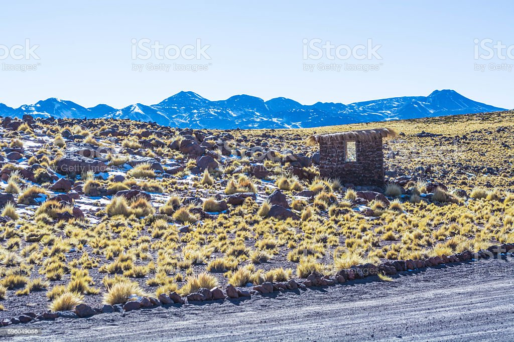 Atacama desert vegetation with little house royalty-free stock photo