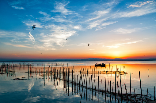 Atardecer en La Albufera de Valencia is one of the most representative and valuable coastal wetlands of the Valencian Community, to the point that in 1986 it was declared a Natural Park. Its value to the environment is extremely important.