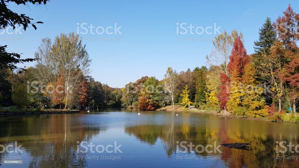 Ataturk Arboretum botanic park on Autumn, Istanbul stock photo
