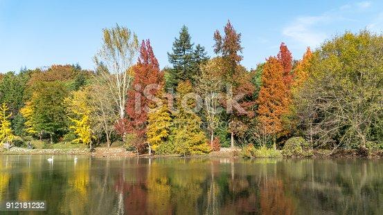 istock Ataturk Arboretum botanic park on Autumn, Istanbul 912181232