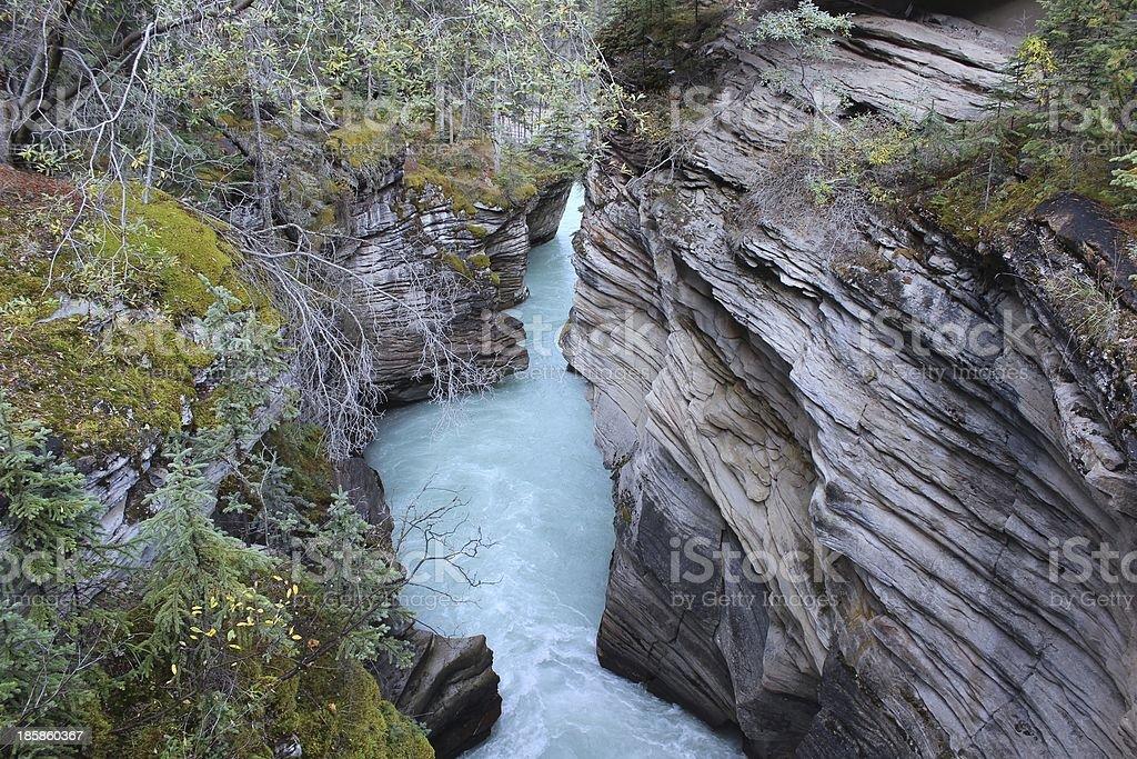 Athabasca Falls, Jasper, Alberta, Canada royalty-free stock photo