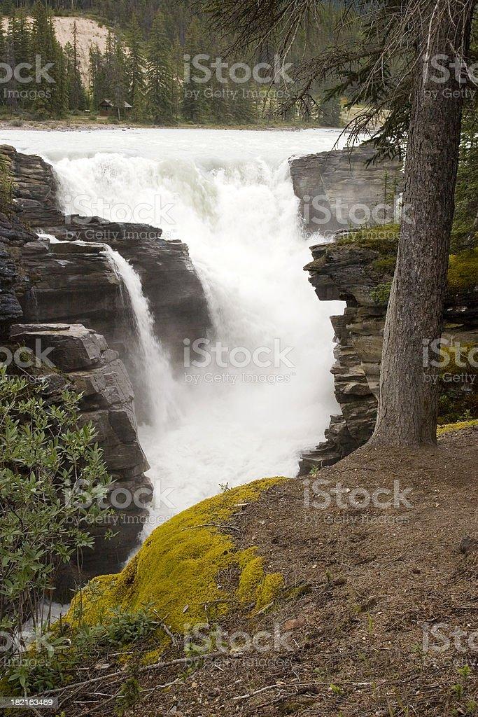 Athabasca Falls royalty-free stock photo
