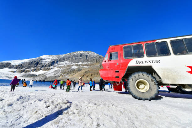 Athabasca Glacier Columbia Icefields, Canada. Massive Ice Explorers, designed for glacier travel, take tourists onto the surface of the Athabasca Glacier Columbia Icefields, Canada. ice floe stock pictures, royalty-free photos & images