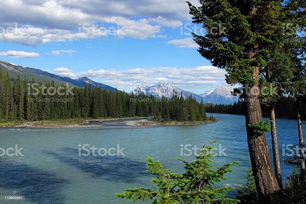 Athabasca River, Jasper,Jasper National Park,Alberta,Canada royalty-free stock photo