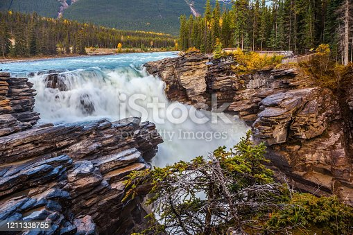 istock Athabasca waterfall in the forests 1211338755