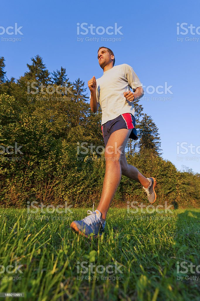 Athlete jogging on the meadow royalty-free stock photo