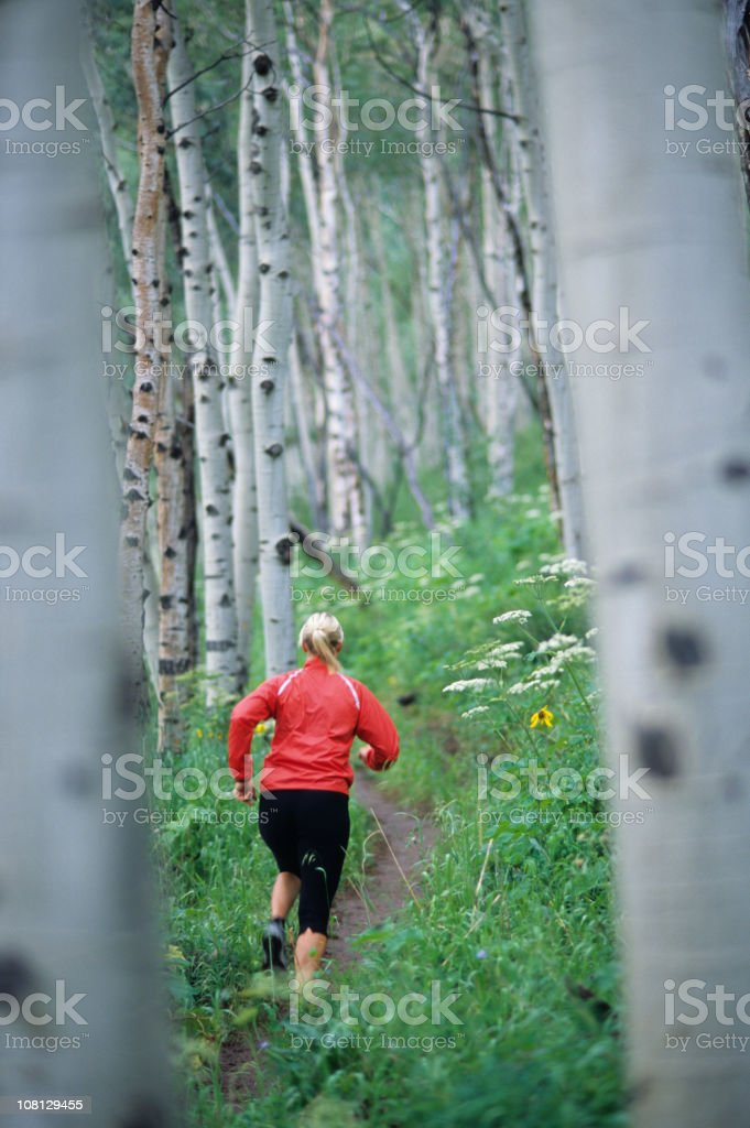 Athletic Woman Trail Running in the Aspens royalty-free stock photo