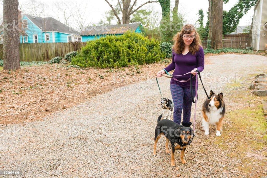 Atlanta Woman in 30s Walking Dogs in Neighborhood Yard stock photo
