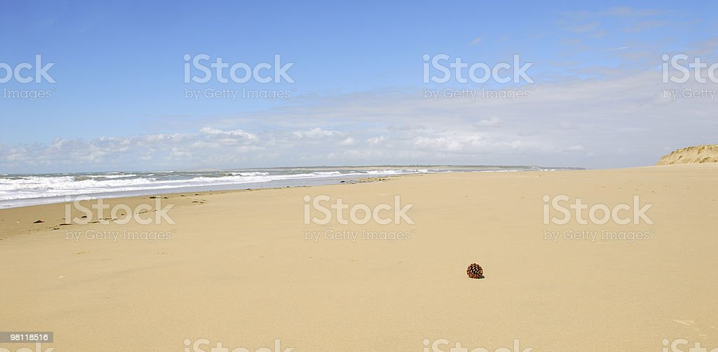 Atlantic Beach royalty-free stock photo