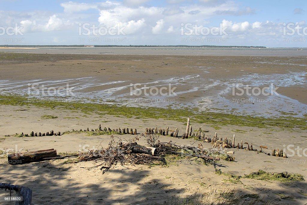 Atlantic Beach royalty-free stock photo