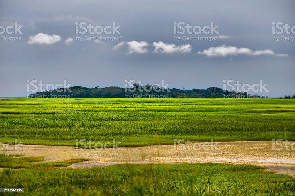 Atlantic Coast Mudflats stock photo
