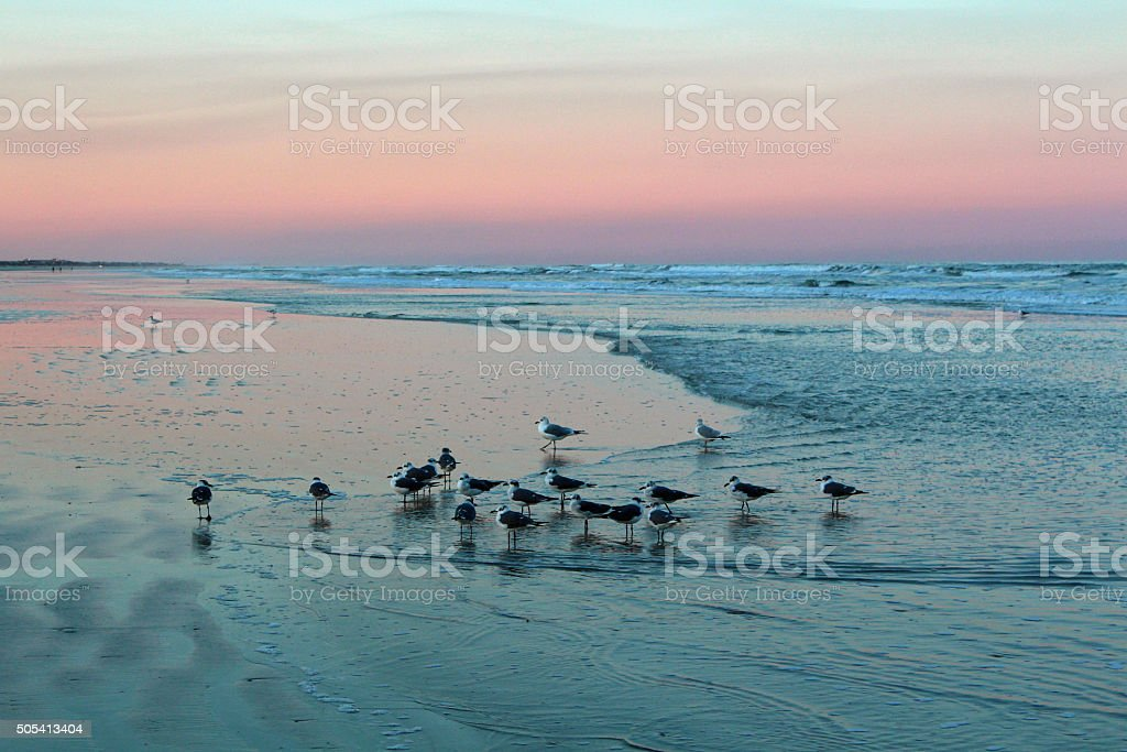Atlantic Dawn stock photo