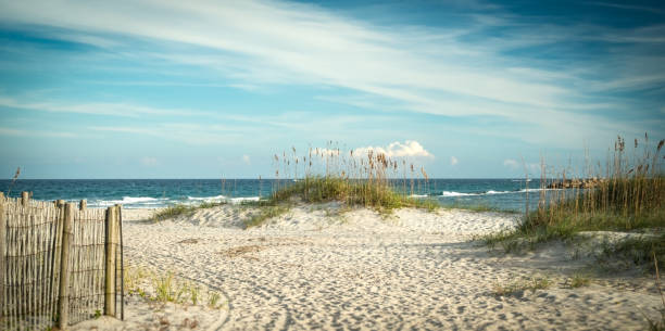 Atlantic Dunes stock photo