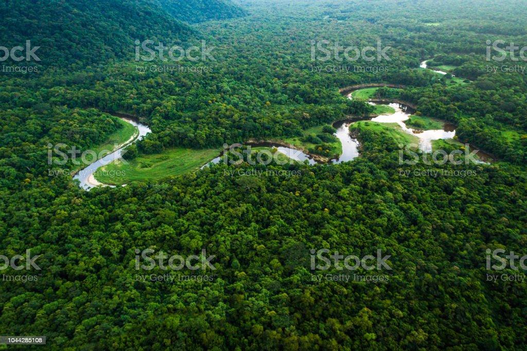 Atlantic Forest in Brazil, Mata Atlantica stock photo