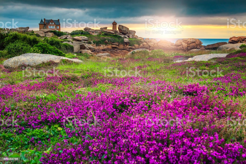 Atlantik-Küste in der Bretagne Region, Ploumanach, Frankreich, Europa – Foto
