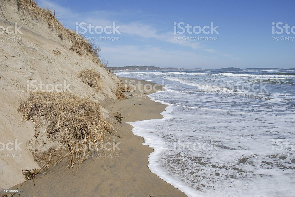 Atlantic Ocean laps at a sand dune in Maine royalty-free stock photo