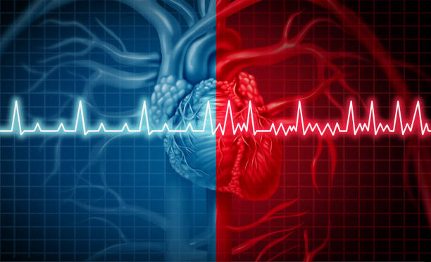 Atrial Fibrillation Atrial fibrillation and normal or abnormal heart rate rythm concept as a cardiac disorder as a human organ with healthy and unhealthy ecg monitoring in a 3D illustration style. pulse trace stock pictures, royalty-free photos & images