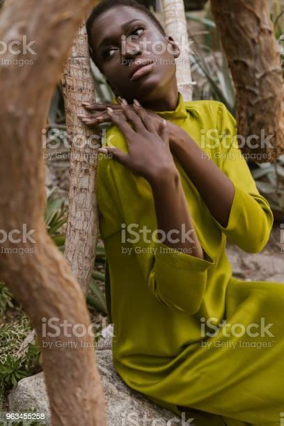 Sarı Elbiseli Poz Çekici Afroamerikan Kız Stok Fotoğraflar & Afrika Kökenli Amerikalılar'nin Daha Fazla Resimleri