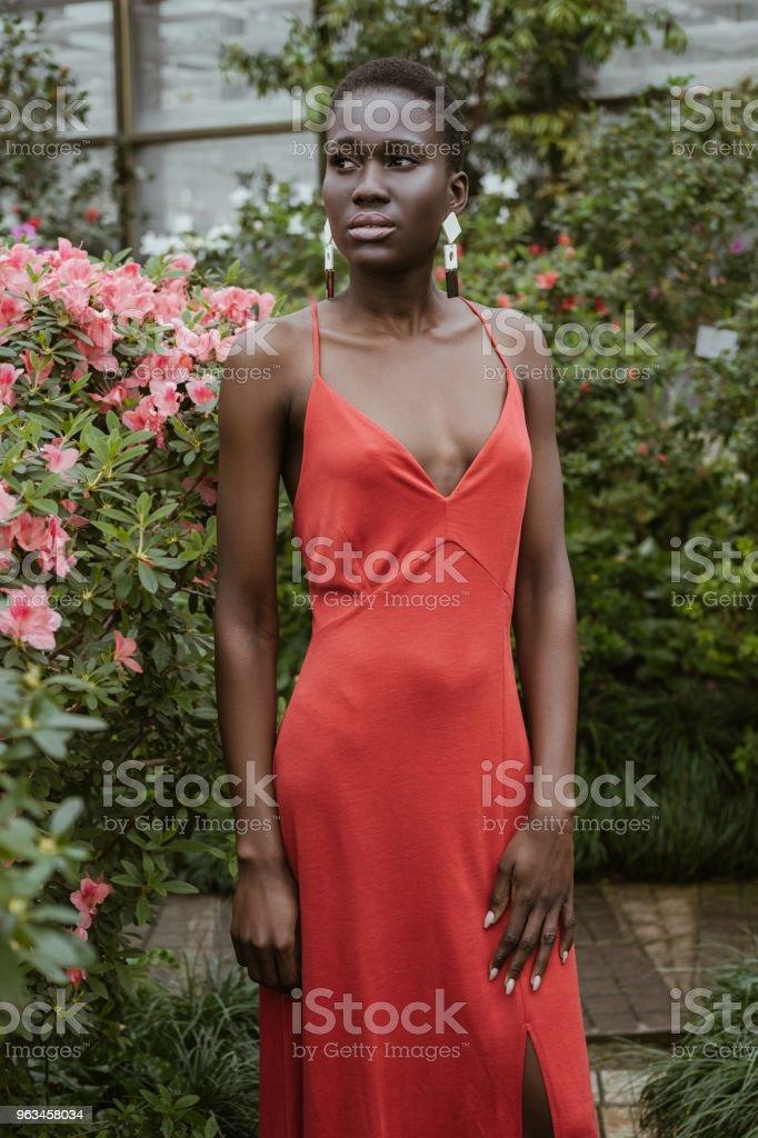 chica atractiva afroamericana con el pelo corto en vestido rojo posando en el jardín con flores - Foto de stock de A la moda libre de derechos
