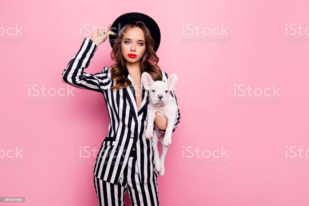Attractive, charming, pretty girl in fashionable outlook, having dog under armpit, holding hat on her head, looking at camera, standing over pink background royalty-free stock photo