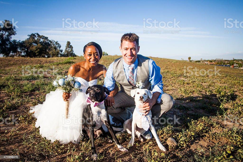 Attractive Diverse Wedding Bride and Groom stock photo