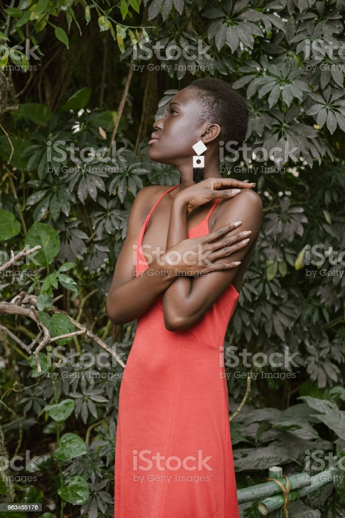 attractive fashionable african american woman posing in red dress - Zbiór zdjęć royalty-free (Afro)