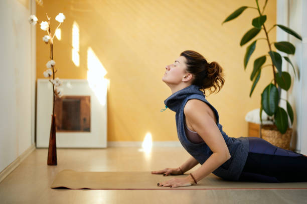 Attractive fit caucasian middle aged brunette doing High Cobra yoga pose in the morning. Home interior. Attractive fit caucasian middle aged brunette doing High Cobra yoga pose in the morning. Home interior. cobra pose stock pictures, royalty-free photos & images