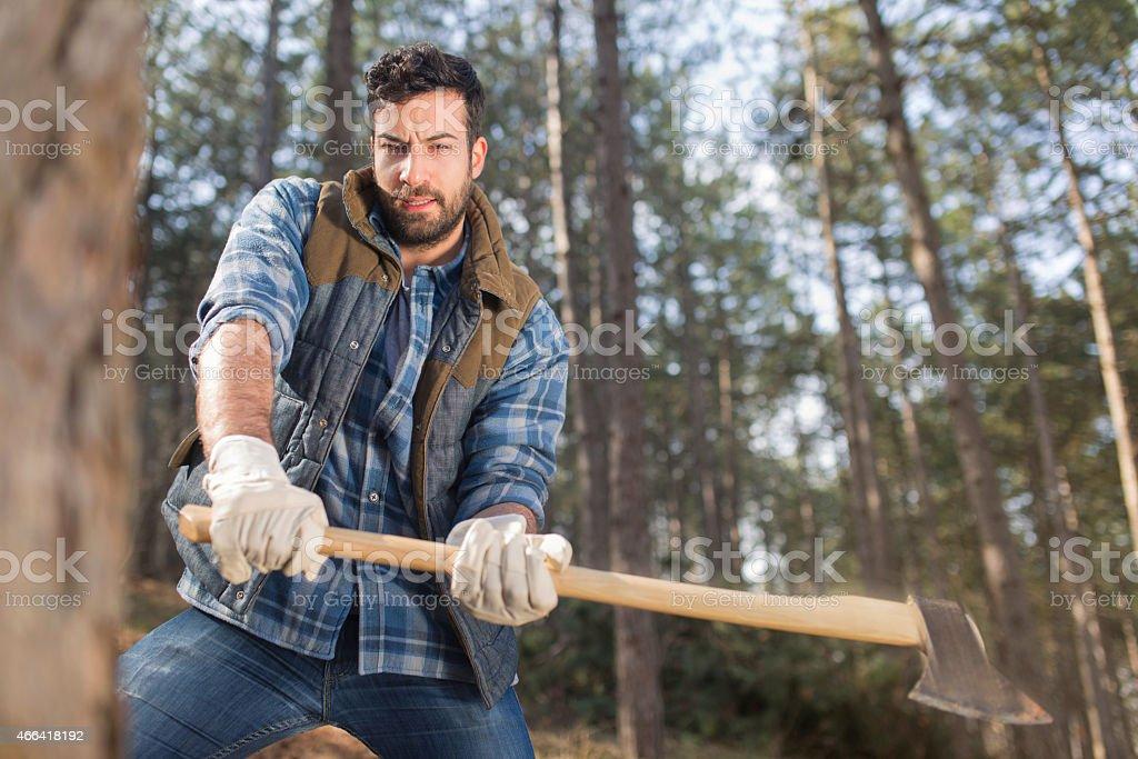 Attractive lumberjack man stock photo