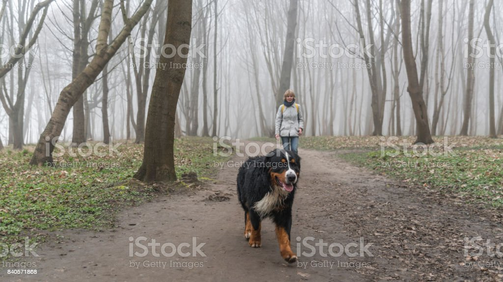 Attractive mature, 50-years-old, active woman walking with her...