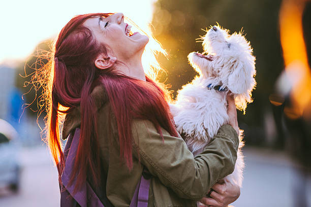 attractive redheaded girl and white puppy smiling together - hundeliebe stock-fotos und bilder